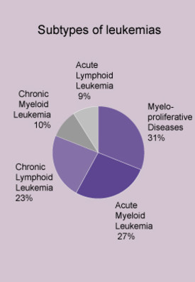 classifications of leukemia Leukemias are classified according to their acute and chronic progress as well as according to their lymphoid or myeloid cell origins acute myeloid leukemia is further classified into subtypes.