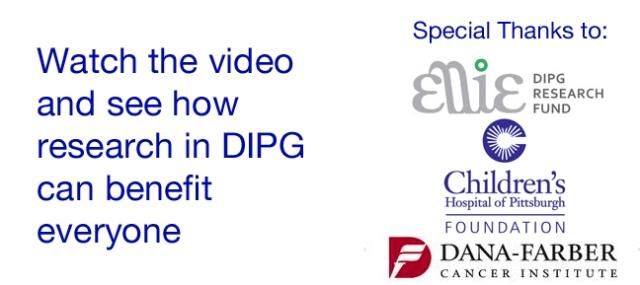 dipgvideo2