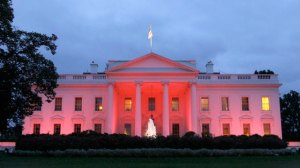 ap_white_house_breast_cancer_pink_thg_111003_wmain