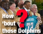 Dolphins?