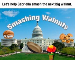 SmashWalnutSenate
