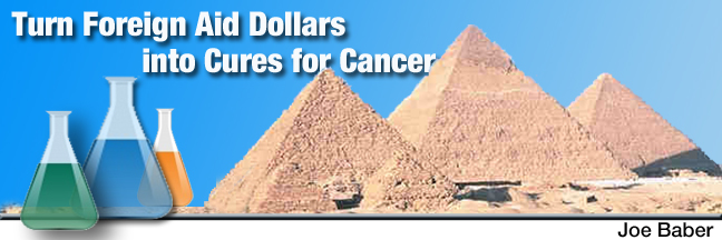 Turn Foreign Aid into Cures for Cancer   Four-Square ...