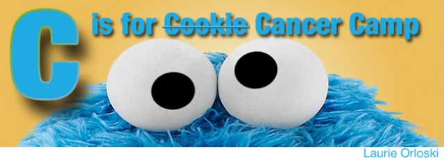 CookieCamp_edited-1