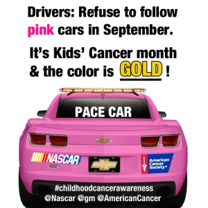 NascarPink2_edited-1