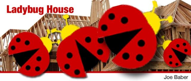 LadybugHouse_edited-3