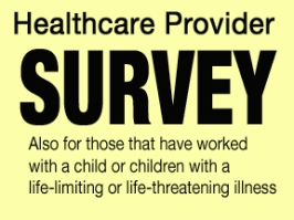 Palliative Care Survey