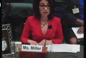 Ellyn Miller at Health Subcommittee Hearing